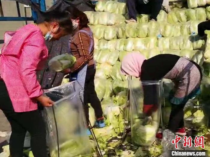 """兰州促废弃物资源化利用 年""""吞""""33万吨尾菜"""